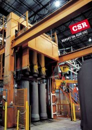 REPORT ON AGM 2002 - CSR