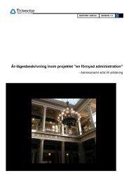 Trivectors rapport (706kB) - Lunds universitet