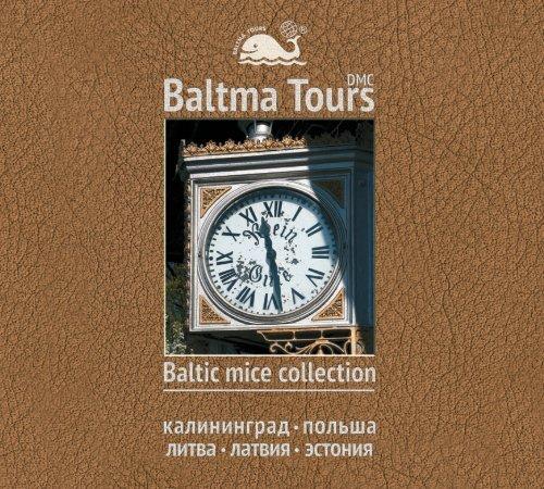 каталог mice-калининград - Балтма Турс