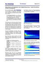 visuelle Darstellung hörbarer Schallsignale - Der Wohnbiologe
