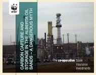 CARBON CAPTURE AND S T O R A G E IN ... - The Co-operative