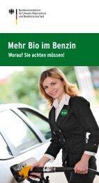 Worauf Sie achten müssen! - E10-Kraftstoff.de