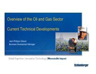 View of the Oil & Gas sector - EGEC