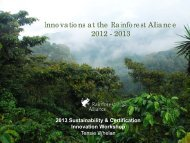 Innovations at the Rainforest Alliance 2012 - 2013