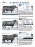 Falcon Seaboard 07•fc-40.indd - Angus Journal - Page 6