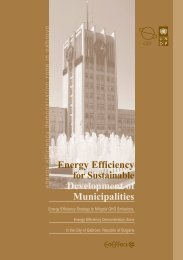 Energy Efficiency for Sustainable Development of Municipalities