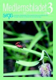 Medlemsblad 3 2007 - SFOG