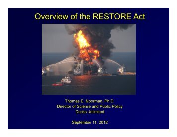 Overview of the RESTORE Act