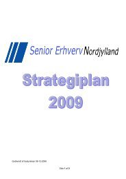 Side 1 af 5 Godkendt af bestyrelsen 08-12-2008 - Senior Erhverv ...
