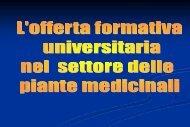 L'offerta formativa universitaria nel settore delle ... - Enrico Avanzi