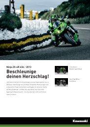 Ninja ZX-6R 636 - 2-Rad Wehrli