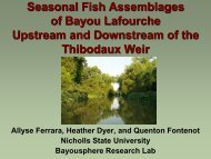 Seasonal Fish Assemblages of Bayou Lafourche Upstream ... - crest