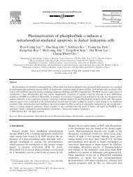 Photoactivation of pheophorbide a induces a mitochondrial ...