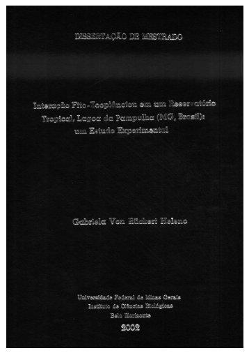 Page 1 Page 2 Universidade Federal de Minas Gerais Institute de ...