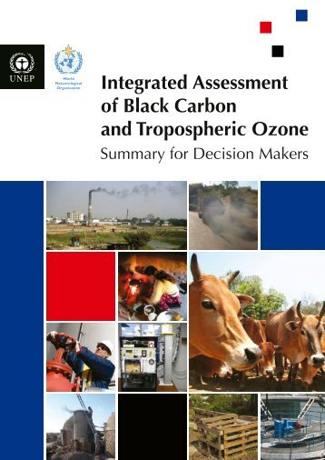 Integrated Assessment of Black Carbon and Tropospheric Ozone