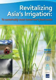 Revitalizing Asia's Irrigation: To sustainably meet tomorrow's ... - FCRN