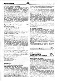 KW 36 - Anzinger Katzen