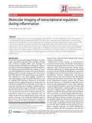 Molecular imaging of transcriptional regulation during inflammation