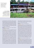 Als PDF herunterladen (4,8 MB) - Weltbibelhilfe - Seite 5
