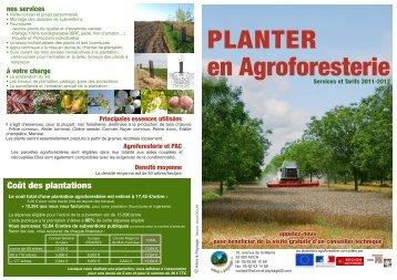 en agroforesterie - Arbre & Paysage