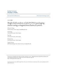 Bright-field analysis of phi29 DNA packaging motor using a ...