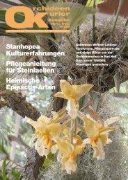 Ãœber Stock und Stein Steinlaelien - Austrian Orchid Society