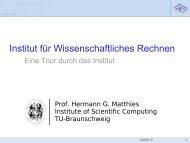 Institut für Wissenschaftliches Rechnen - Technische Universität ...