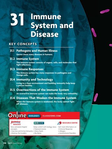 31 Immune System and Disease