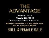 Transcon's Advantage Simmental & Red Angus Bull & Female Sale