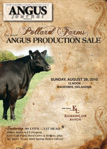 noon, sunday, august 29, 2010 - National Cattle Services, Inc.
