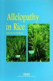 Allelopathy in rice - IRRI books - International Rice Research Institute