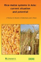 Rice-maize systems in Asia - IRRI books