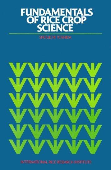 Fundamentals Of Rice Crop Science - IRRI books - International ...