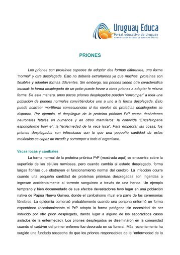 PRIONES - Uruguay Educa