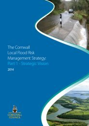 Local-Flood-Risk-Management-Strategy