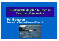 Sustainable Dolphin Tourism