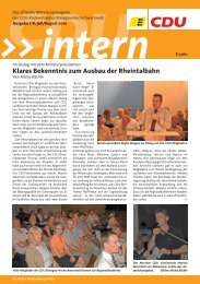 08 CDU Intern Ausgabe August 2010.pdf