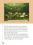 Lesson 8:Mangrove Swamp - Page 7