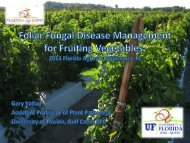 Foliar Fungal Disease Management for Fruiting ... - Florida Ag Expo