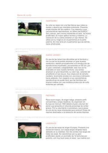 Razas de cerdo.pdf