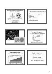 Oxygénothérapie Hyperbare et soins des plaies ... - HUBRUSSEL.net