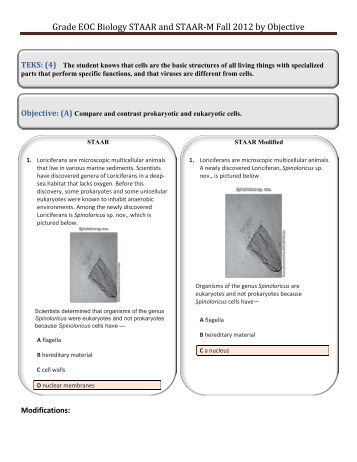Staar Eoc Geometry Study Guide