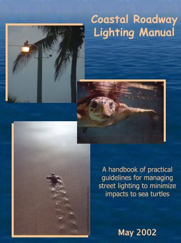 Coastal Roadway Lighting Manual - Volusia County Government