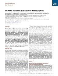 An RNA Aptamer that Induces Transcription - Markus Steber