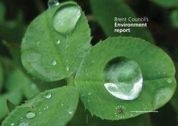 Environmental Report - Brent Council