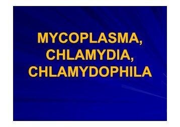 MYCOPLASMA, CHLAMYDIA, CHLAMYDOPHILA - LF