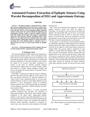 Automated Feature Extraction of Epileptic Seizures Using Wavelet ...