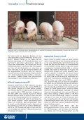 Eine klare Strategie zahlt sich aus - Tiergesundheit und mehr - Seite 2