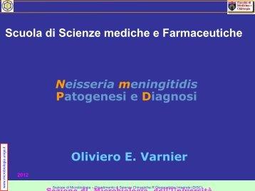 di - Sezione di Microbiologia