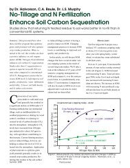 No-Tillage and N Fertilization Enhance Soil Carbon Sequestration